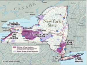 Finger Lakes 101: The Basics on this Upstate New York Region | Wine ...